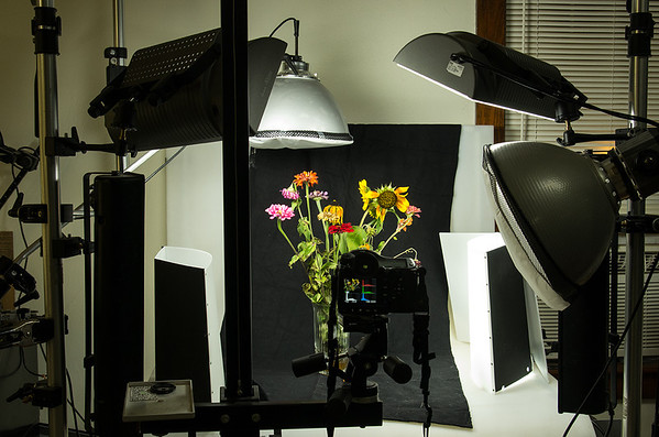 With Sally Wiener Grotta's guidance, students will design and photograph still life setups, exploring the effects of lighting, angle and composition.